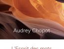 L'Esprit des mots de Audrey Chapot